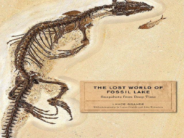 The Lost World of Fossil Lake: Snapshots from Deep Time – Chicago, University of Chicago Press