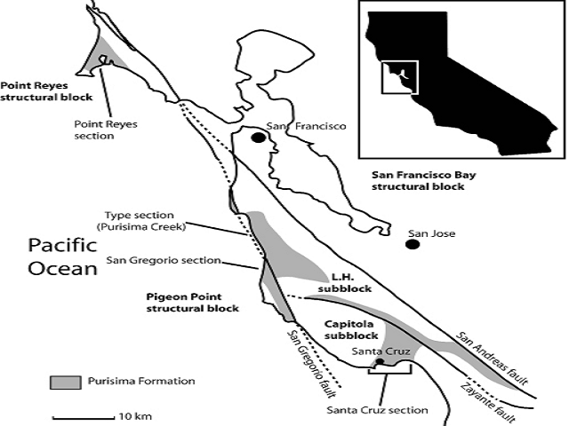 Generalized geologic map of part of central California, showing relevant tectonic features, and major localities and exposures of the Purisima Formation. Inset shows California and box showing location of map. L.H. subblock = La Honda subblock of the Santa Cruz structural block; Capitola subblock is also part of the Santa Cruz structural block. Faults are shown as black lines, or dashed where uncertain